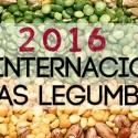 hummus de lentejas legumbres