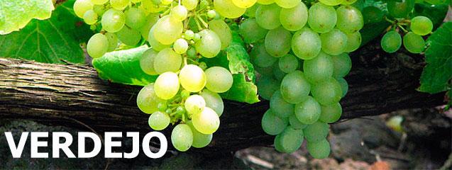 uva-verdejo