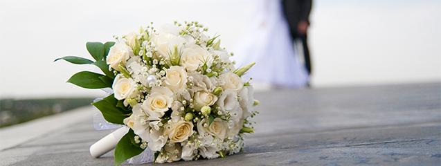 presupuesto de boda