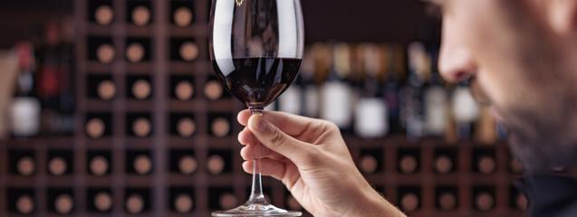 maridaje vinos