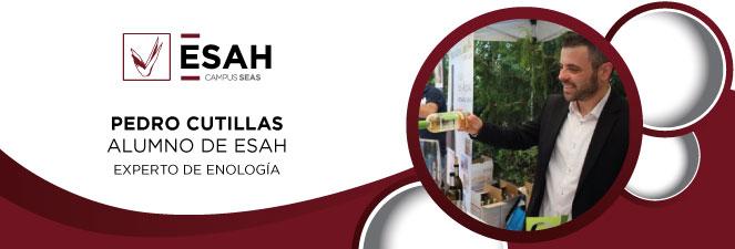 Pedro Cutillas experto enólogo empresa de vinos