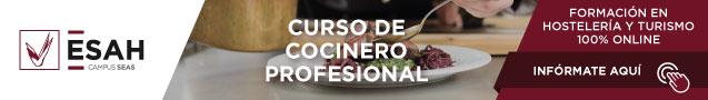 curso-cocinero-online