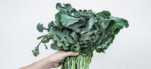 Kale: una col con mucho calcio