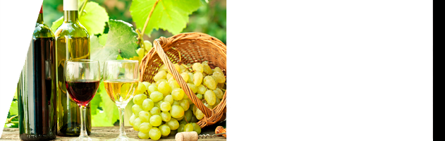 Curso de Viticultura