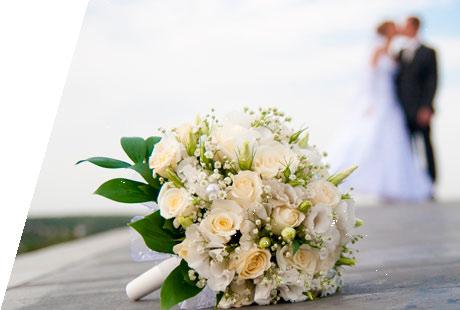 Seminario Wedding Planner