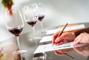 seminario-cata-de-vino