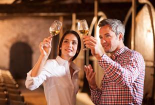 curso viticultura online