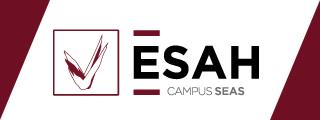 Estudios superiores en Hostelería y Turismo